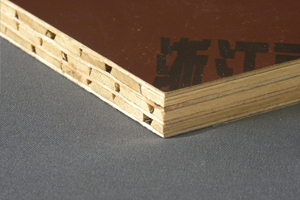 bamboo film ply wood suppliers